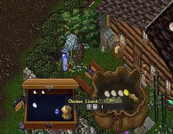 20111109_Egg.jpg